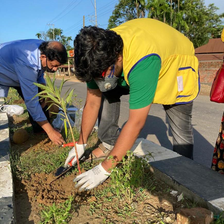 Tree Plantation Project