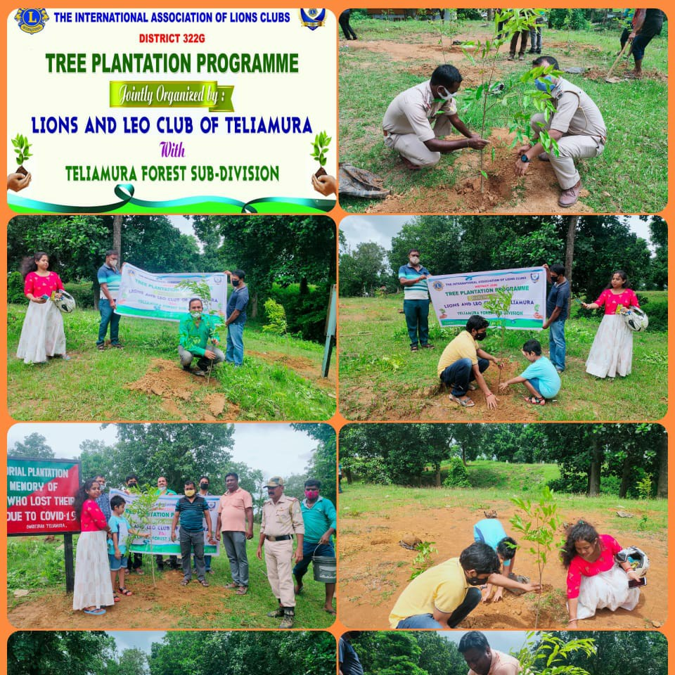 TREE PLANTED IN THE MEMORY OF WHO LOST THEIR LIVES DUE TO COVID-19
