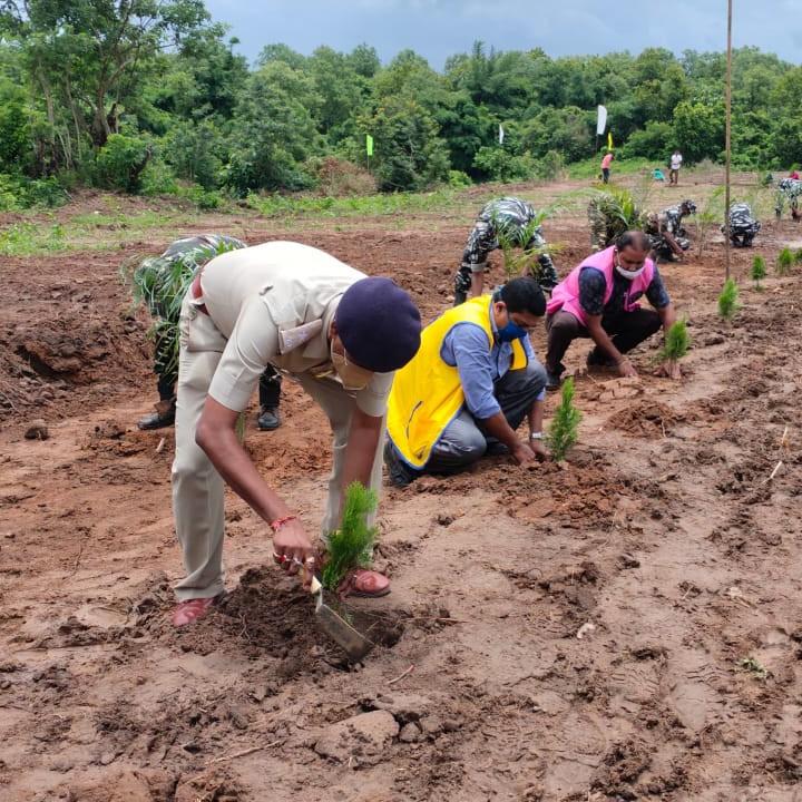 Tree Plantation Programme.